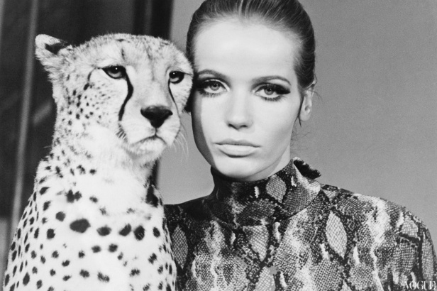 veruschka_with_leopard-_william-klein