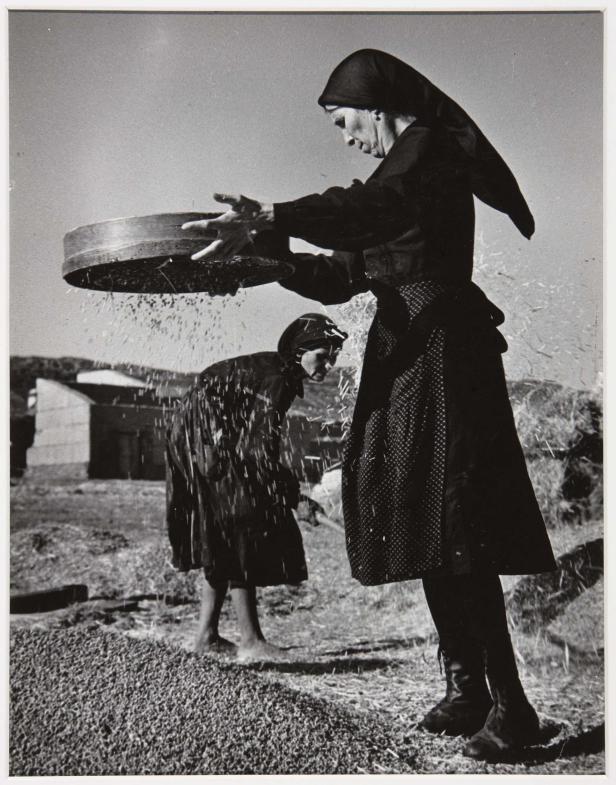 womanwheat
