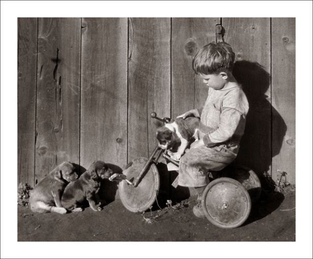 Children with Pets through Their Parents' Lens (6)