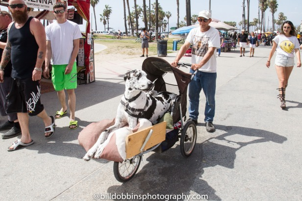 Venice_Beach-Easter-Sunday-20150306-0009