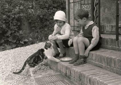 cat, 1920s (18)