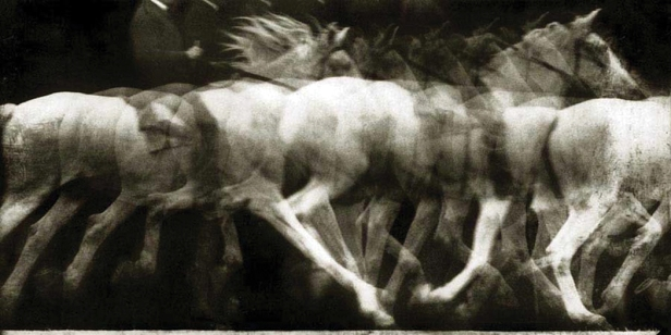 The-movement-of-a-running-white-horse-1886-photographed-by-Étienne-Jules-Marey