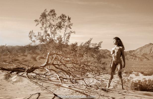 Angela_Mraz-desert-