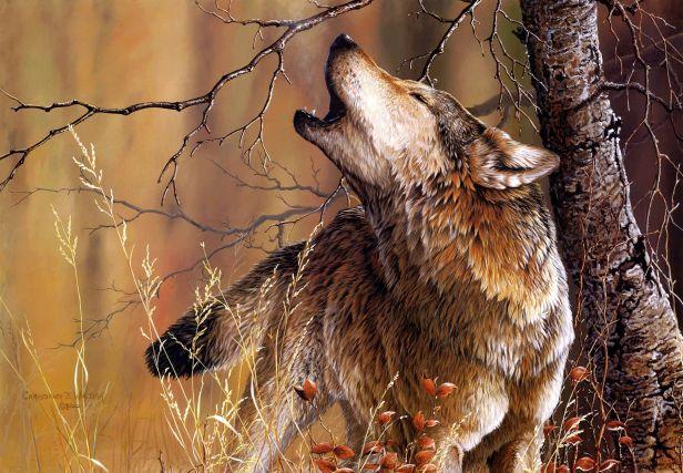 Wolfe howlilng.