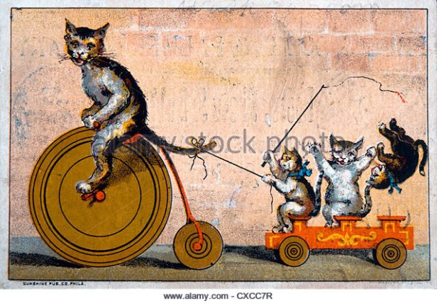 cat-riding-bicycle-towing-wagon-with-kittens-phelps-dodge-and-palmer-cxcc7r