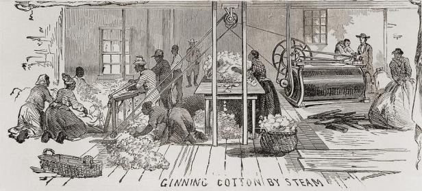 ginning-cotton-by-steam-powered-gin-everett