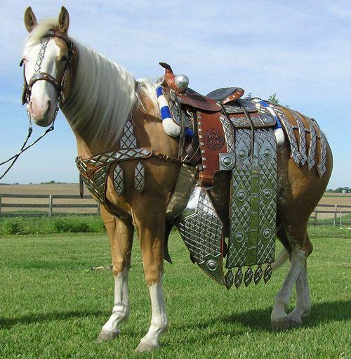 a86d828dc52eac3ec54c5769bc1fd96b--western-saddles-western-tack